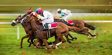 Tradition chinoise des courses de chevaux
