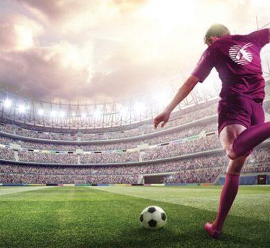 Quels sports sont considérés comme les plus gros succès pour les parieurs sportifs ?